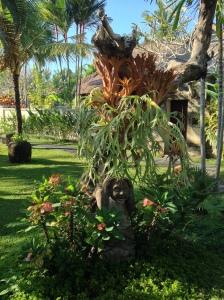 Bali-Garden3